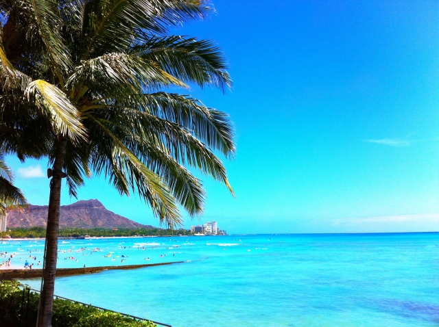 ハワイ旅行には欠かせない!おススメスポット3選!?